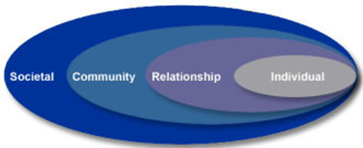Social Ecology Model Graphic